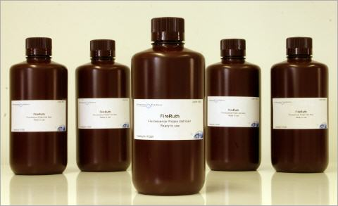 FireRuth fluoescent staining solution for gels